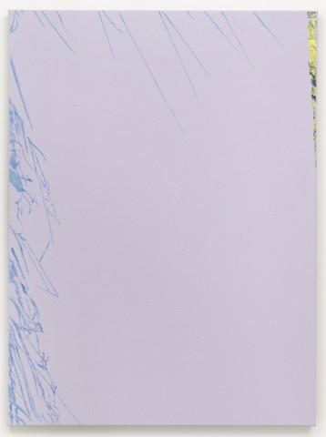 Daniel Schubert – untitled (plein air_studio) 2014 – oil paint on canvas 75 x 55 cm