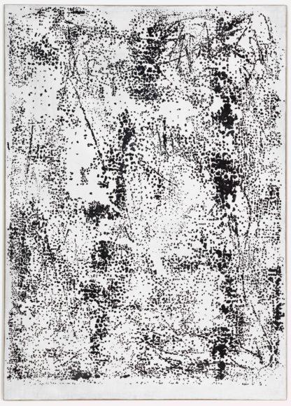 Daniel Schubert – untitled 201213 – rabbit glue, pigment on canvas 210 x 150 cm