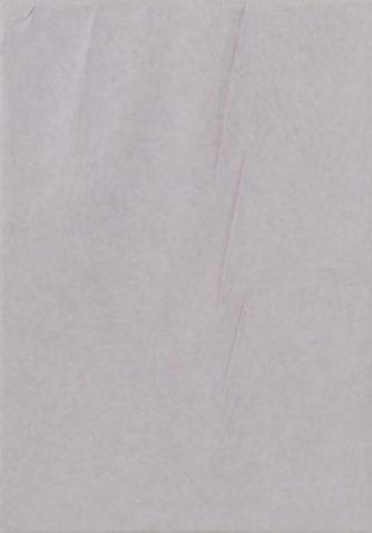 Daniel Schubert – untitled 2014 – oil paint on canvas 65 x 45 cm